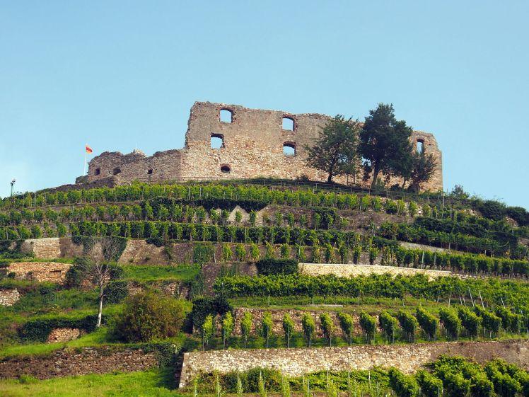 Burg_in_Staufen_im_Breisgau,_pic2
